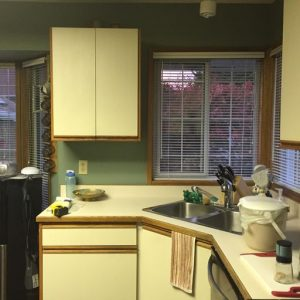 Reumken's kitchen before renovation